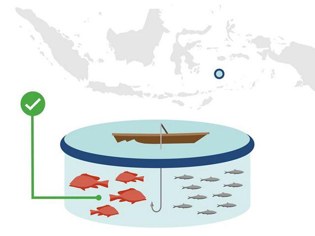 Zero Overfishing
