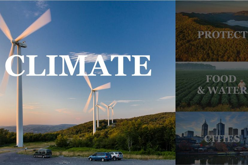 Tackle climate change: One of The Nature Conservancy's top priorities