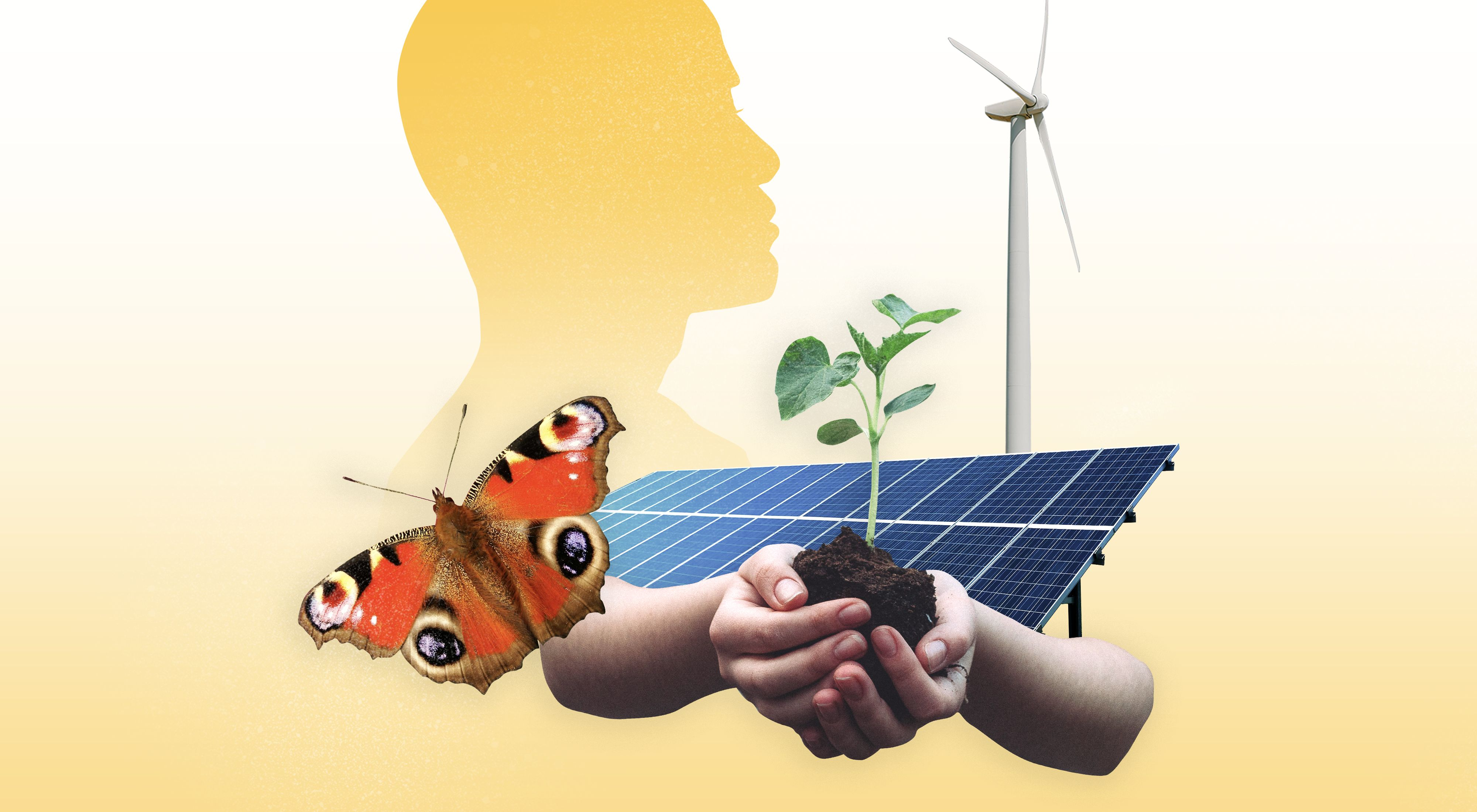 Graphic drawing of a solar panel, wind turbine, butterfly, and plant growing in soil in hands.