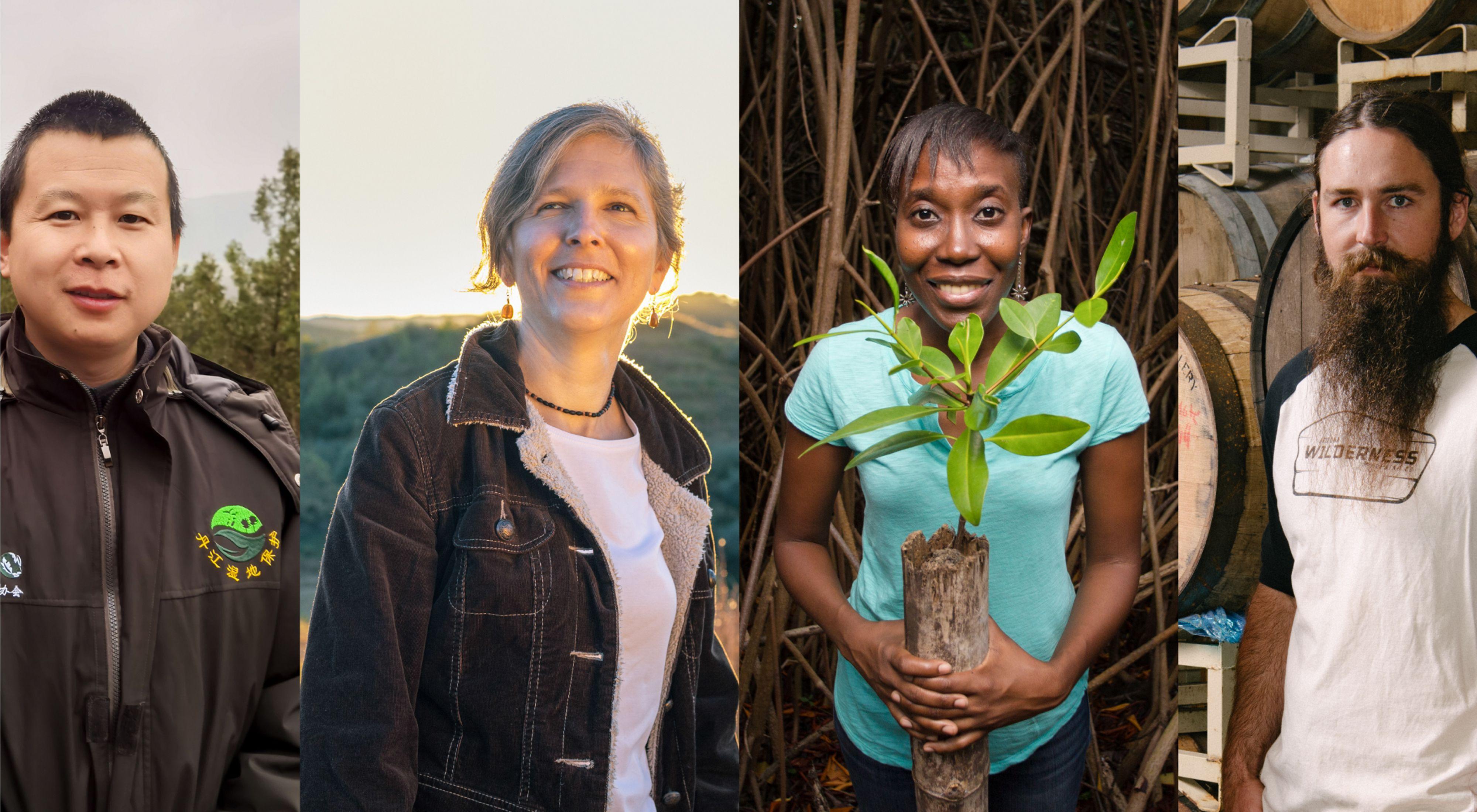 Cuatro imágenes de diferentes personas en diferentes actividades relacionadas a la conservación