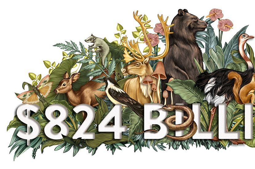 A color illustration shows animals and plants and the number is $824 Billion.
