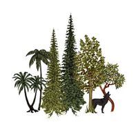 A color illustration of a forest with trees from several different climates.
