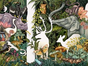 A color illustration shows wildlife and plants with some as white outlines to show they are missing due to the extinction crisis.