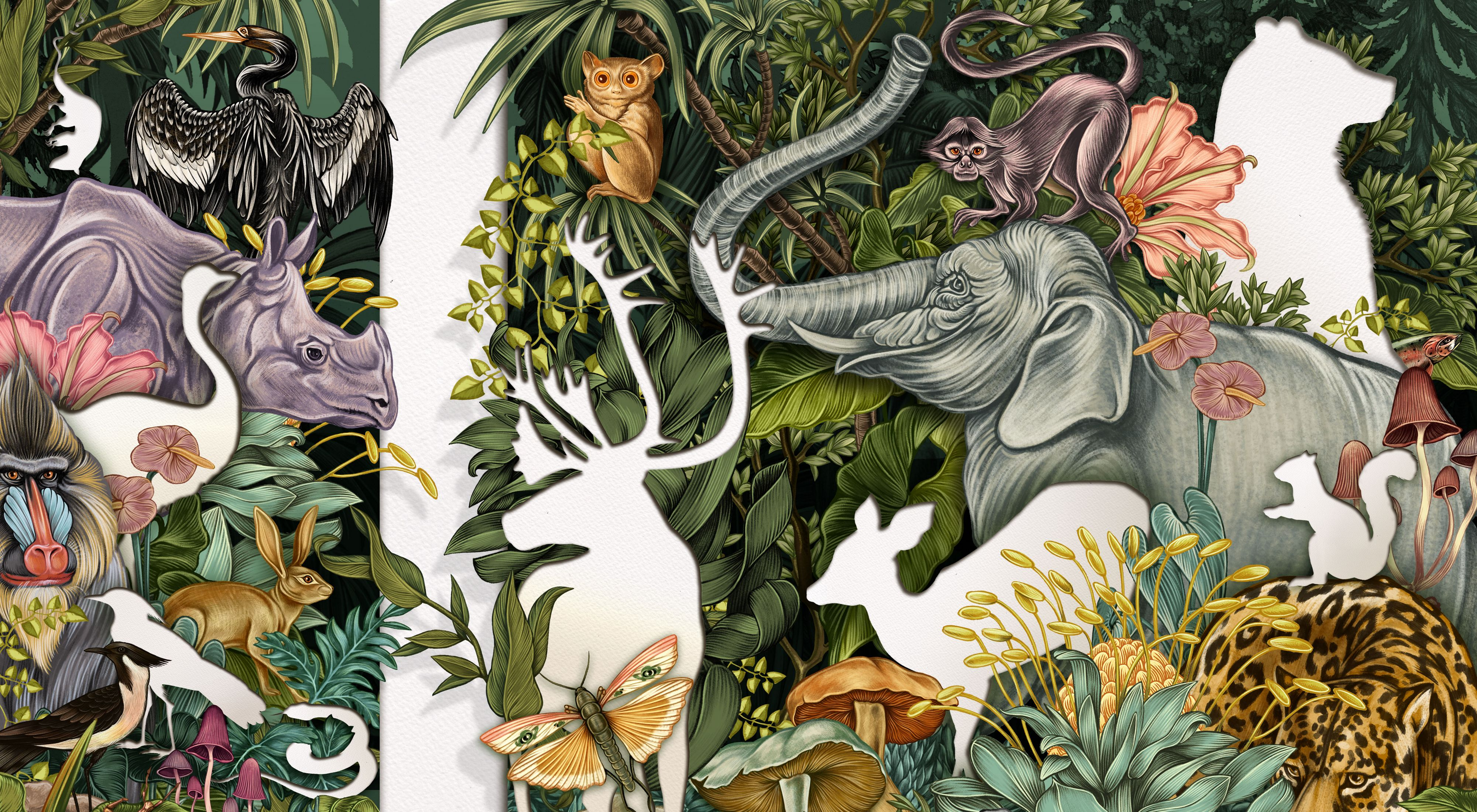 A color illustration shows many plants and animals with some missing as empty silhouettes.