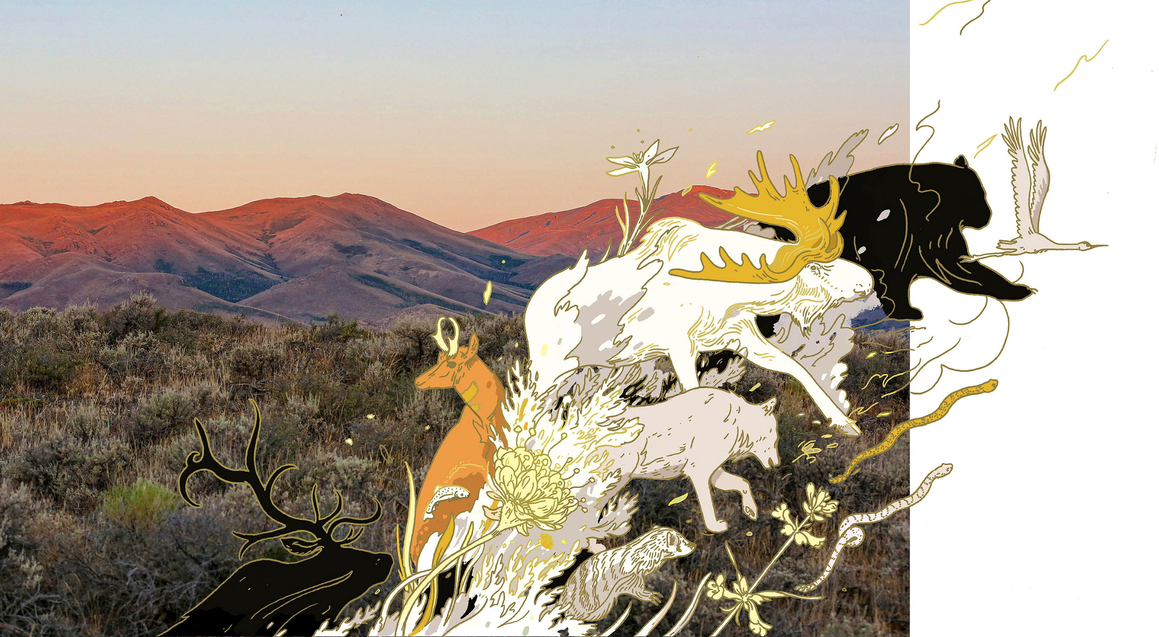 Illustrated animals move across a forest and mountains landscape.