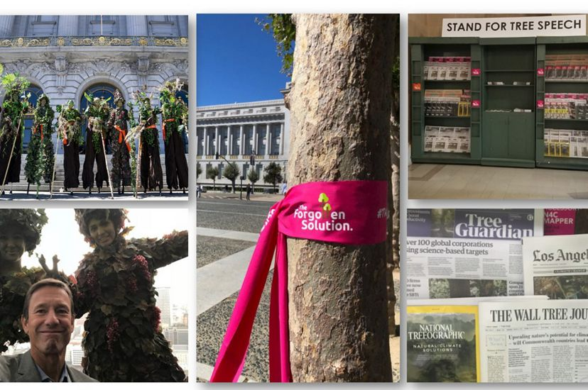 Installations promoting natural climate solutions at the Global Climate Action Summit