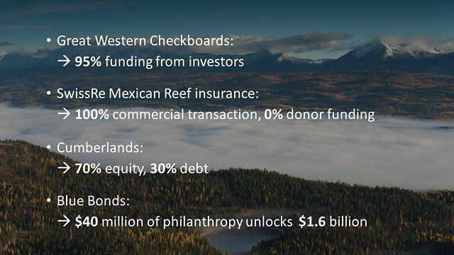 The role of impact capital in major Nature Conservancy projects