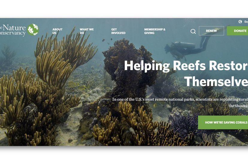 The Nature Conservancy website homepage (screenshot).