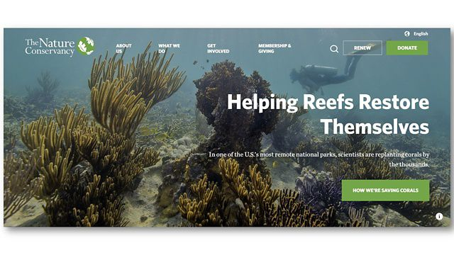 The Nature Conservancy website homepage (screenshot).