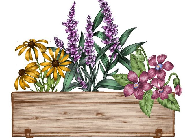 flower box garden box do it yourself bee friendly pollinator gardening tip