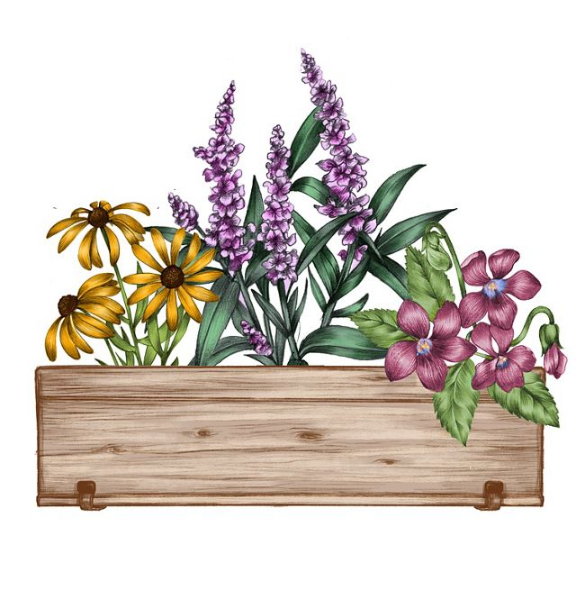 A color illustration of a flowerbox full of flowers