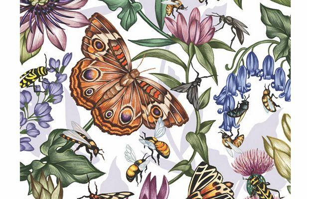 Pollinators Opener