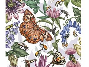 A color illustration of pollinators and plants