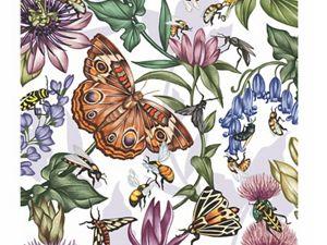 Illustration of Pollinators