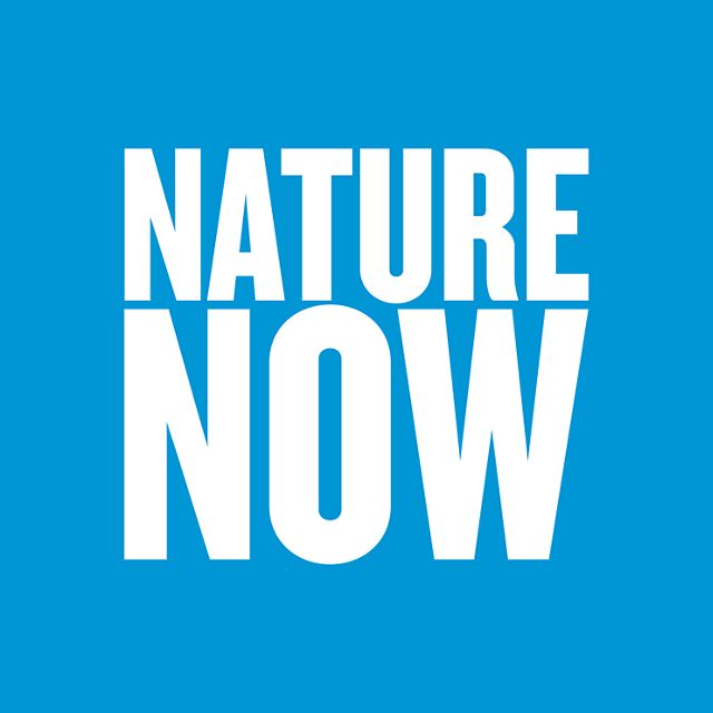 "Bold yellow text graphic that says ""Nature Now"""