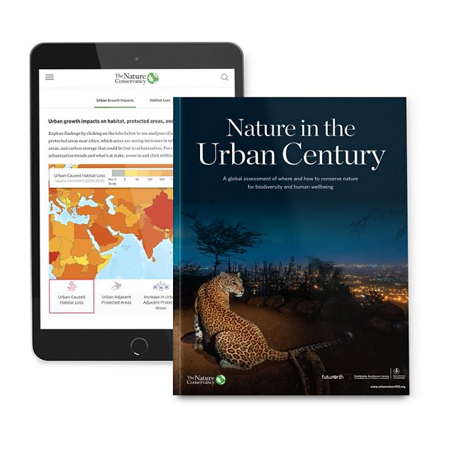 Cover of the Nature in the Urban Century report