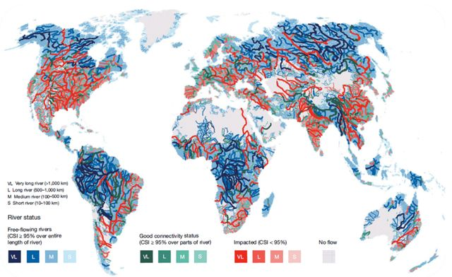 Map detailing river flow across the world.
