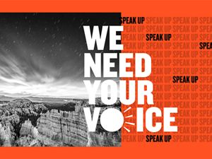Graphic featuring the words We Need Your Voice and Speak Up.