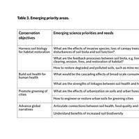 Emerging Priority Areas