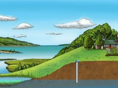 A visual of the constructed wetland project on Long Island © Jan C. Porinchak