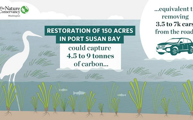 of 150 acres in Port Susan Bay