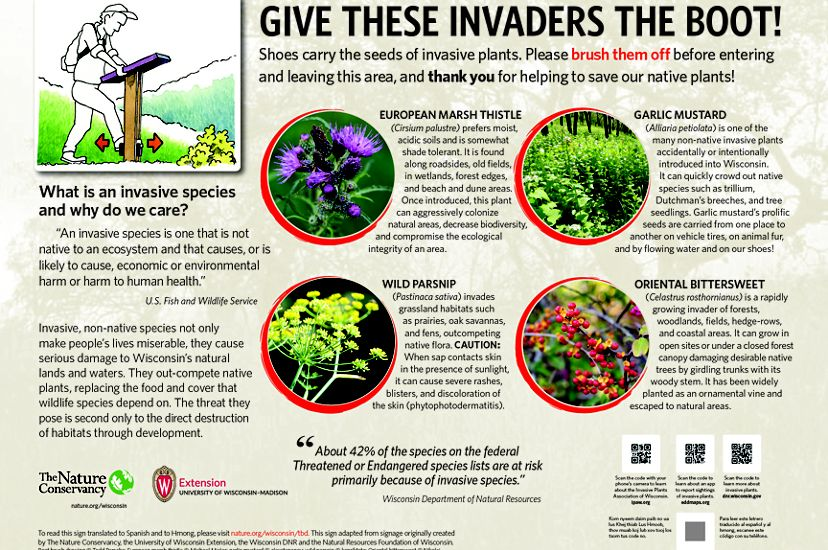 Graphic showing why you should use a boot brush to rid your boots of invasive species.