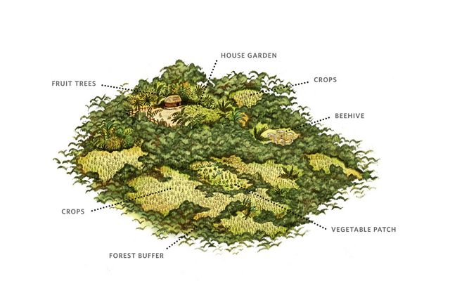 A color illustration shows a farm with areas for multiple crops and even beehives