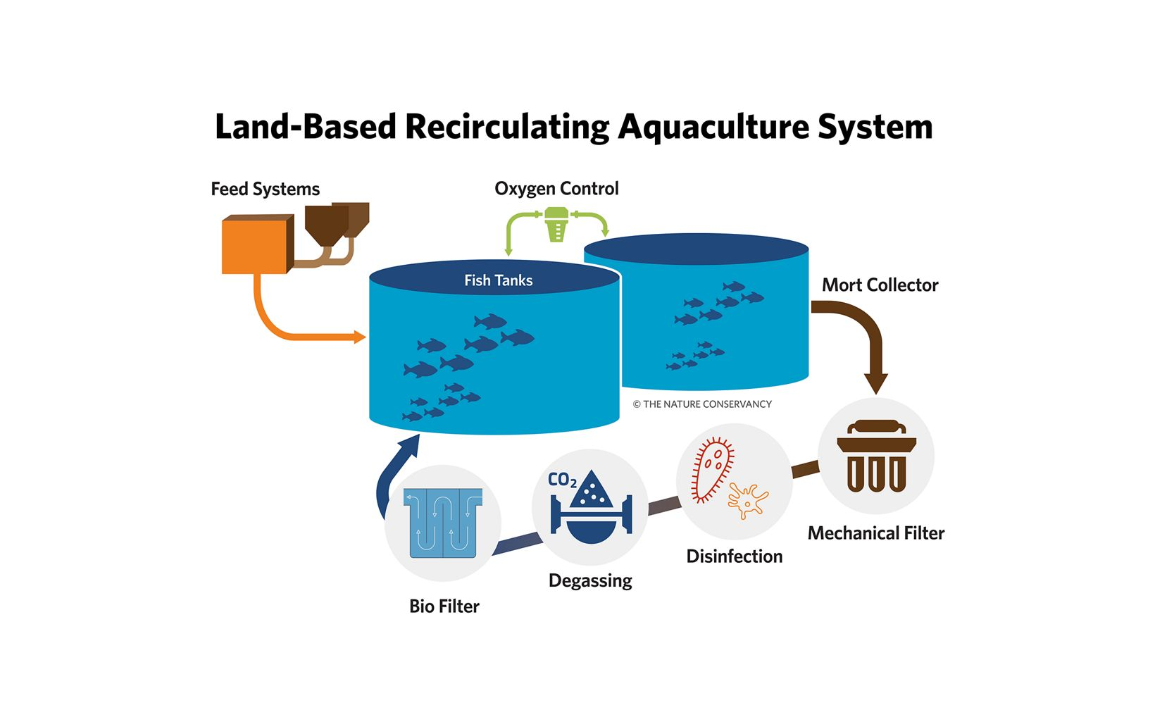 Land-based RAS may offer an alternative to traditional, near-shore finfish production that may enable improved environmental outcomes, higher production density, reduced mortality, and greater control over production outcomes.