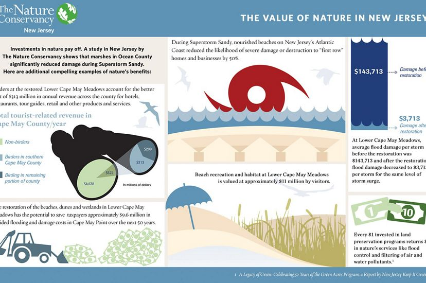 Investments in nature pay off.