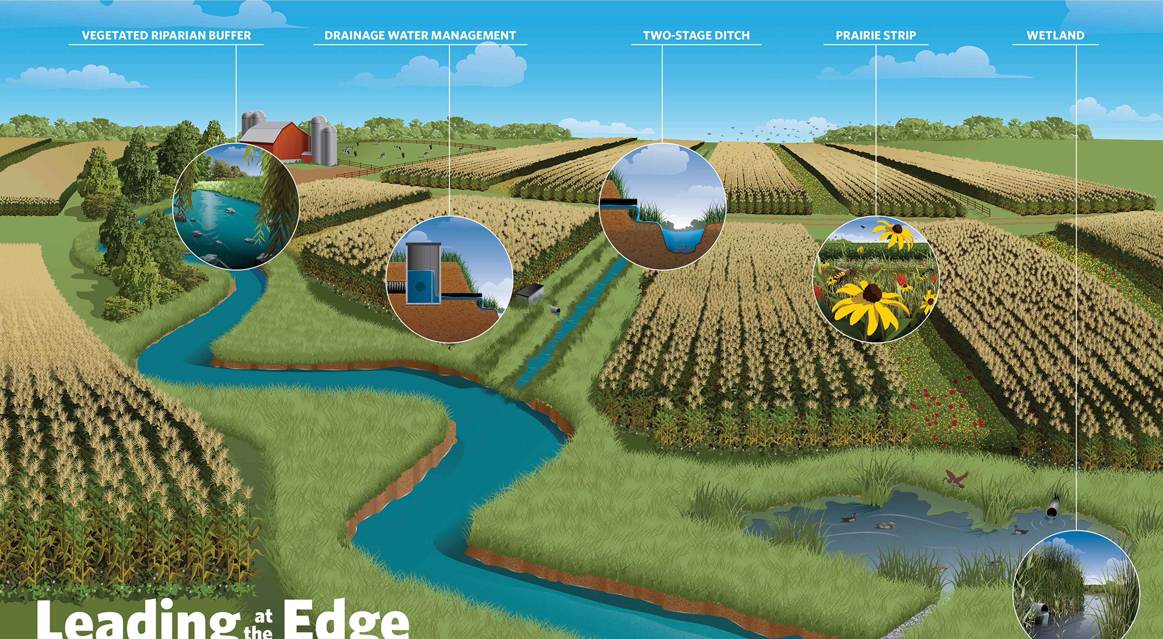 Infographic showing five different edge of field practices.
