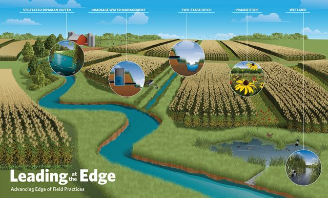 An infographic depicting edge-of-field agricultural best practices.