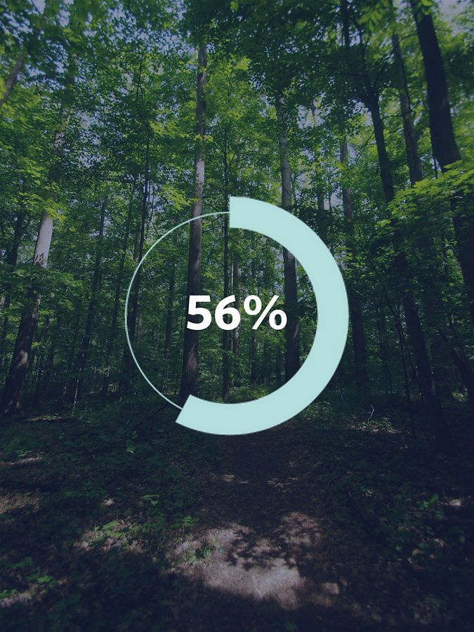 Graphic showing a tree and the number '56%'.
