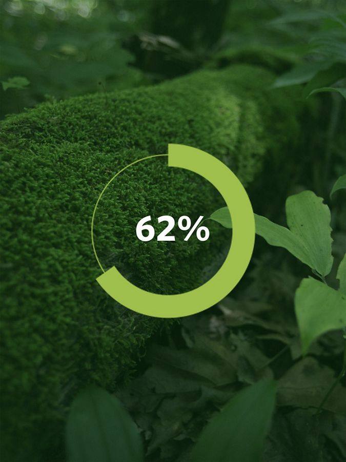 Graphic showing a tree and the number '62%'.