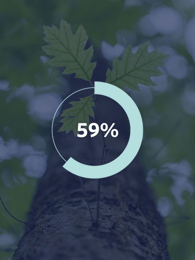 Graphic showing a tree and the number '59%'.