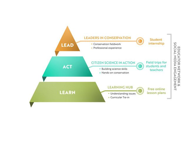 A pyramidal graphic showing the Lead-Act-Learn process.