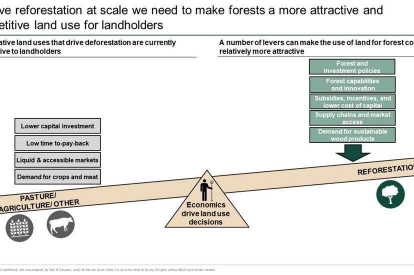 Graph showing the need for incentives for reforestation.
