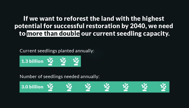 Graphic showing the need for growing and planting more seedlings.