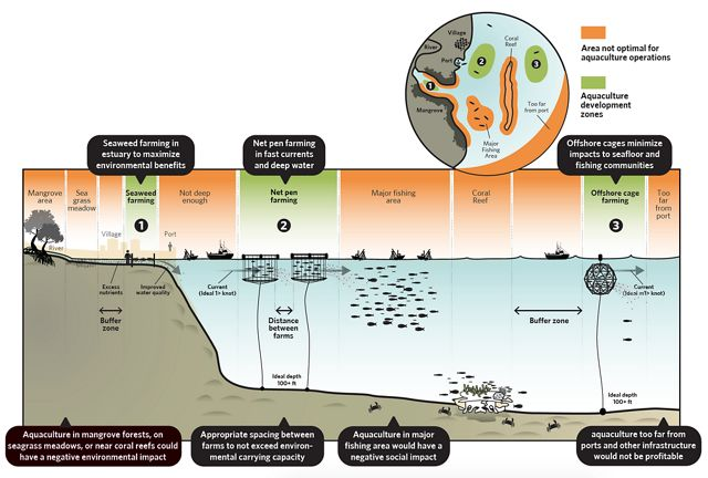 Smart Growth in Aquaculture
