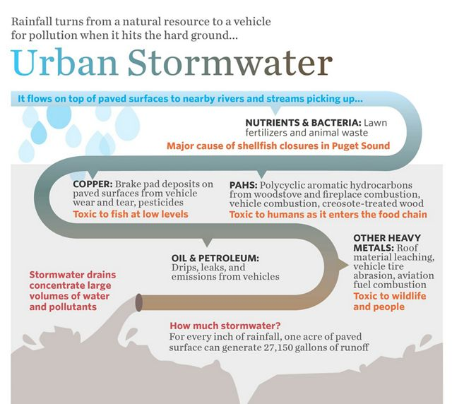 Rainfall turns from a natural resource to a vehicle for pollution when it hits the hard ground.