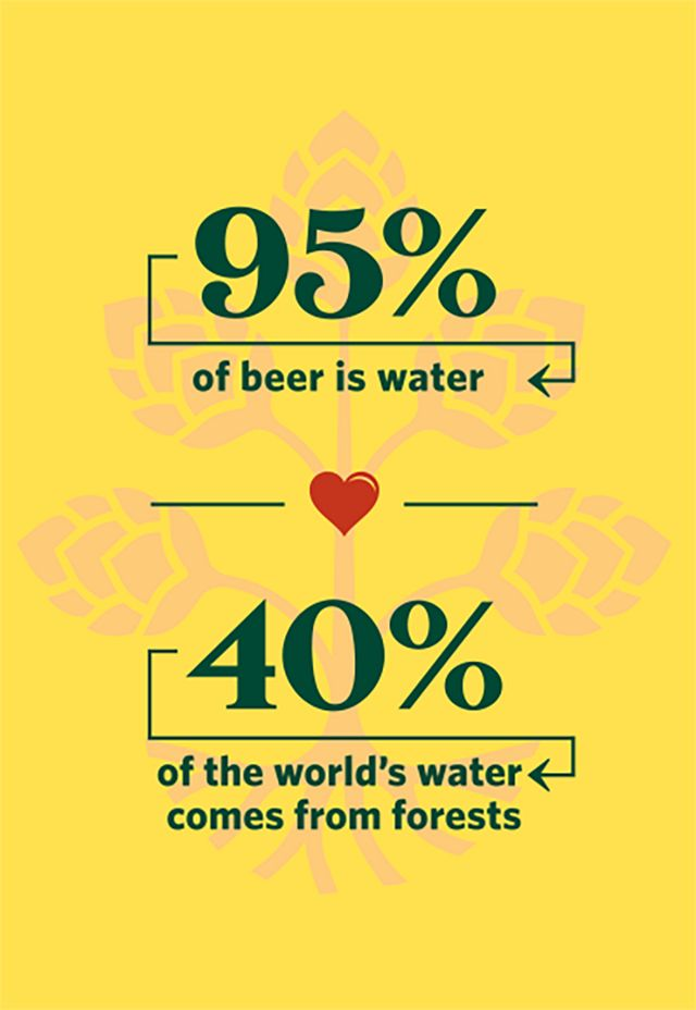 95% of beer is water and 40% of the world's water comes from forests.
