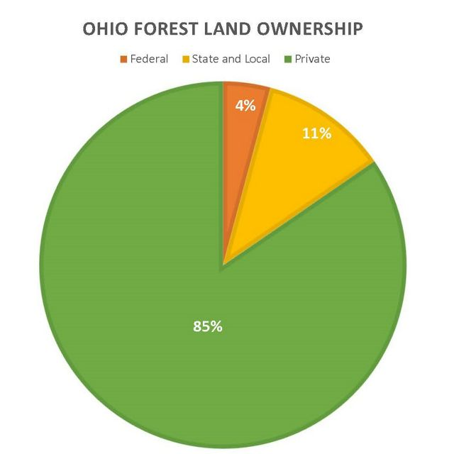 Pie chart showing federal, state, local and private land ownership.