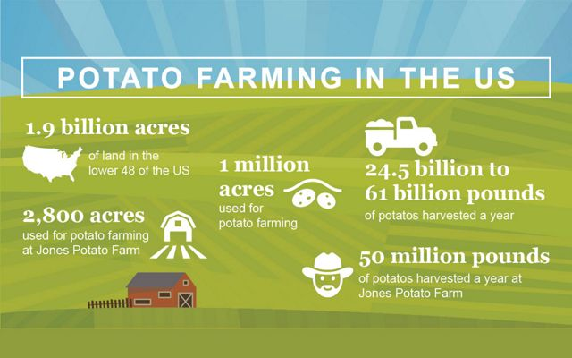 Potato farming by the numbers.