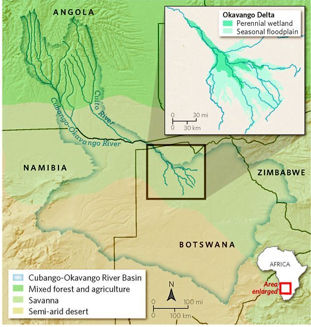 A map shows the Okavango River basin and the surrounding desert, forest and savanna.