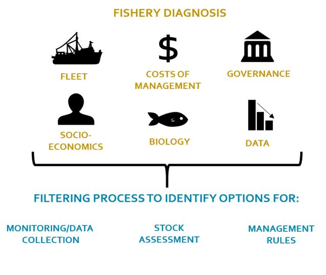 Fishery Diagnosis