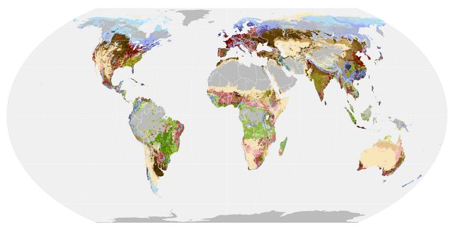 a global map showing different categories of foodscapes across continents