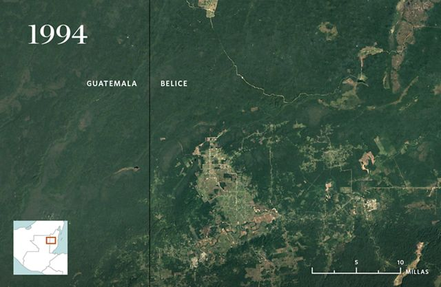 Vista aérea del área boscosa con pequeño desarrollo.