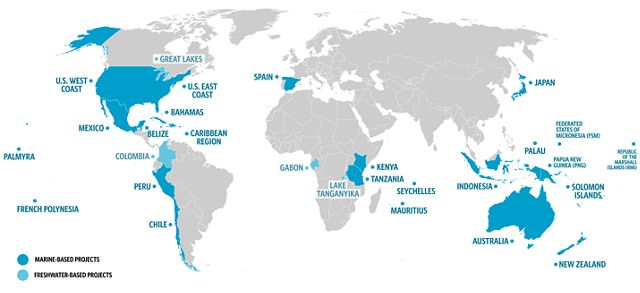 global map with countries around the world highlighted in blue that represent where TNC has active fisheries projects