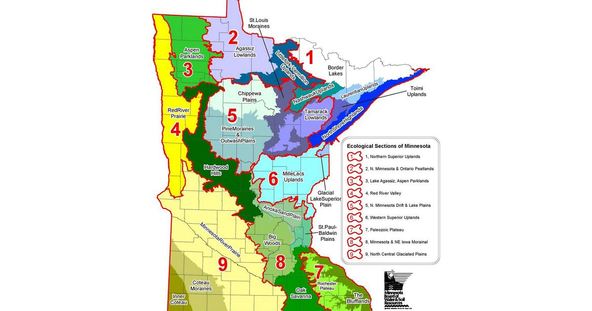 Ecological Sections of Minnesota