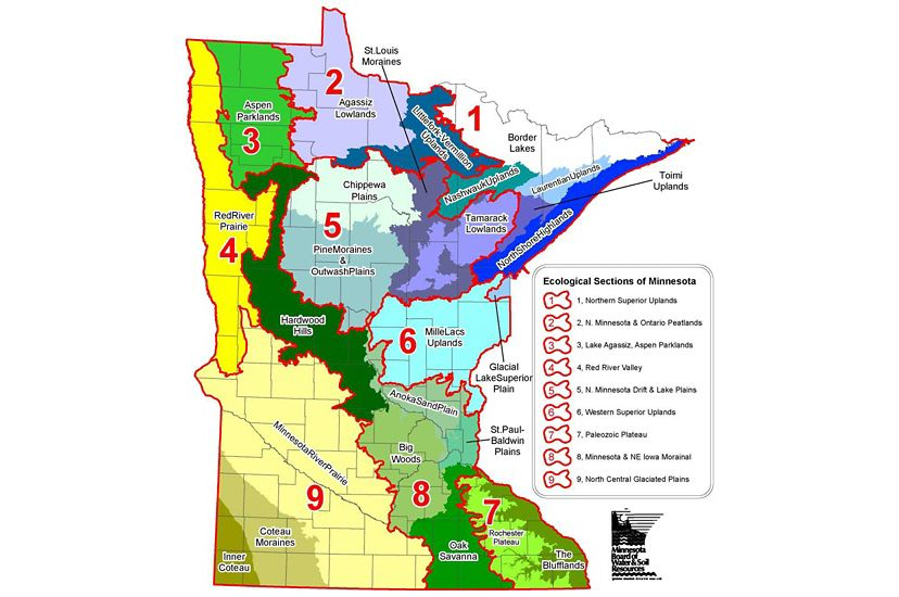 Map of Minnesota showing the 9 Ecological Sections across the state.