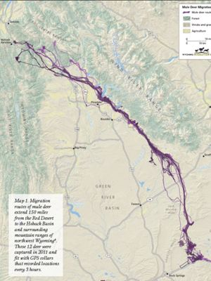 Map showing migration of mule deer.